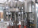 Volledige Automatische Roterende het Vullen van het Jus d'orange van de Fles van het Huisdier Machines