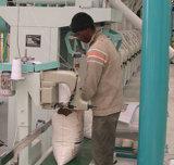 50t/H 전체적인 선 청소 시스템, 맷돌로 가는 시스템, 해외 지점을%s 가진 옥수수 축융기