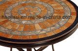Openlucht /Rattan/de Reeks van de Stoel & van de Lijst van de Rotan van het Meubilair van de Tuin/van het Hotel Patio/(HS 1027C& HS6177DT)