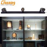 Warme Licht van de Vlek van het Kabinet van de LEIDENE Showcase van Juwelen het Lichte Mini