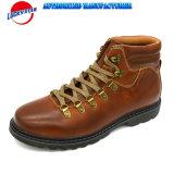 Chaussures occasionnelles de modèle neuf de mode