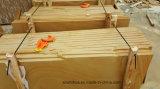 Wall/Cladding/Exterior를 위한 오스트레일리아 Yellow 또는 Gold/Beige/Cream/White Wood Vein Sandstone Slabs Honed/Mushroom/Bushhammered