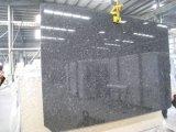 Losas de granito gris acero&Mosaicos pisos de granito&Albañilería
