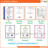 La Chine batterie solaire Batterie UPS La batterie de stockage 12V 100Ah