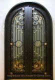 Передние двери из кованого железа из кованого железа двери / Современные двери из кованого железа с электронным управлением-009