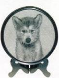 Фото Lithograph - собака