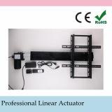 Metalurgia máquina actuador lineal eléctrico 24V, motor de CC