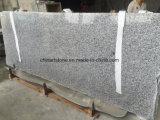Controsoffitto di marmo della cucina del granito per il Governo