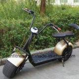 [هرلي] أسلوب رخيصة كهربائيّة درّاجة ناريّة [60ف] بطّاريّة دواسة [سكوتر] مع [بلوتووث]