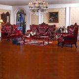Hauptmöbel mit realem ledernem Sofa und Kaffeetische