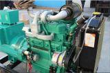 자석 힘 디젤 엔진 발전기 세트 40kw 판매