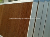 Nasse Wand-Gewächshaus-Gerätekühlung-Auflage für Malaysia