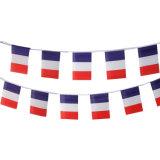 étamine 2018 promotionnelle de la France de coupe du monde de la Russie du polyester 75D (J-NF11P07045)