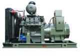 방탄 덮개와의 디젤 엔진 발전기 조합