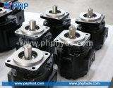 Pompa a ingranaggi idraulica commerciale P75/P76 di Parker/
