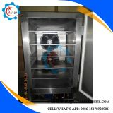Duas portas de carnes utilizadas frutas vegetais Blast freezer para venda