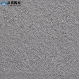 Panneau autonettoyant de terre cuite du fournisseur 18mm de Xiamen pour la façade de construction