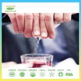 Выдержка завода Stevia пищевой добавки
