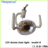Lâmpada de Odontologia de alta qualidade para Exmination Oral
