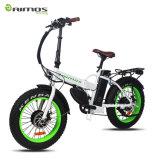 Bicicleta elétrica 48V 500W da cidade verde com bateria de lítio