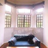 現代デザイン低価格の鋼鉄プロフィールの開き窓Windows