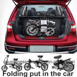 전기 자전거를을%s 가진 접히는 공장 250W/48V 14inch Portable는 건전지를 제거한다