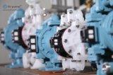 """1/2 """" 공기에 의하여 운영하는 두 배 격막 접착제 펌프"""
