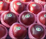 90% rote Farbe frisches Huaniu Apple