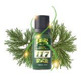 Чисто необходимое эфирное масло Масл-Розмари (PE-117)