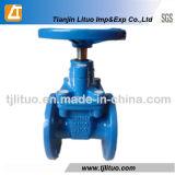 DIN3352 F4のゲート弁またはDuvtileの鉄の弾力性のあるゲート弁