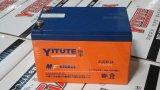 Les batteries pour les voitures électriques 6-DZM-14