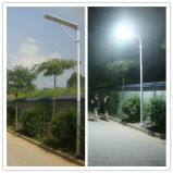20W poder más elevado todo en una luz solar integrada