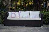 PET Rattan-Sofa-gesetzte Garten-Möbel-im Freiensofa