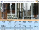 Piscina Exterior Founatin água do bico e bico de jato em aço inoxidável
