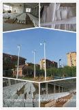 S Windmolen van de Decoratie van de Tuin van het Type 100W 12V de Kleine (shj-100S)