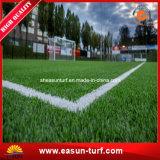 [50مّ] كرة قدم وكرة قدم رياضات عشب اصطناعيّة