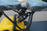 Тип 2017 Harley самоката Citycoco электрический для взрослого с 1000W 60V/30ah