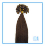 前担保付きのケラチンの釘Uの先端の人間の毛髪の拡張