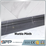 Marbre normal Polished de la pierre M141 Nero Marquina pour le Plinth et bordage et le bâti