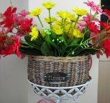 (BC-WF1014) Cesta natural hecha a mano de la flor del sauce de la alta calidad