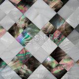 Frischwassershell und schwarze Lippenmopp-Shell-Mosaik-Fliese