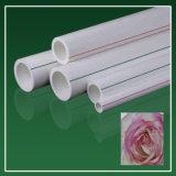 中国の専門の製造者の高品質プラスチックPPRの管