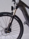 カーボンファイバーフレームが付いているYuebo T300のクランク駆動機構の電子バイクの電気自転車