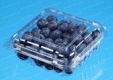 Las frutas de plástico de embalaje envase PET de verificación