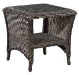 庭の枝編み細工品か藤の家具の一定表および椅子(LN-2121)