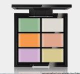 얼룩 반점 자연적인 피부 3 색깔 선택적인 Breathable 장식용 Concealer 커버