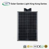 интегрированный солнечный сад 30W с дистанционным управлением (светлым королем Kong Серия)