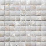 Het zoetwater Shell Zuivere Witte Vierkante Mozaïek van het Gezicht van de Boog