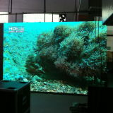 シンセンの熱い販売の高い明るさのフルカラーの屋内LED表示スクリーンP7.62