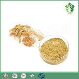 有機性緑のオートムギエキスの10:1 ~20: 1 20%~70%ベータGlucans